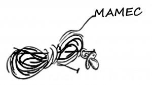 logo MAMEC